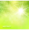 Background with palm branches vector