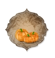 Orange pumpkin background vector