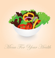 Isolated vegetables salad bowl vector