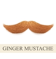 Realistic ginger vintage curly mustache vector