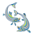 Two swimming fishes vector