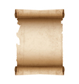 Ancient scroll paper vector