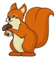 Squirrel holding mushroom vector