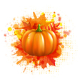 Orange with blobs autumn leafs and pumpkin vector