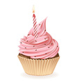 Birthday candle cupcake vector