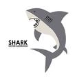 Shark design vector
