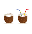 Coconut and two straws vector
