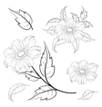 Flowers and leaves dahlia contours vector