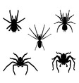 Spiders vector