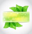 Green leaves banner vector