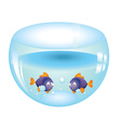 Fishes in aquarium vector