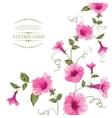 Bindweed flower on paper vector