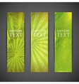 Set of green banners with grunge cardboard texture vector