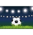 Soccer ball and night stadium vector
