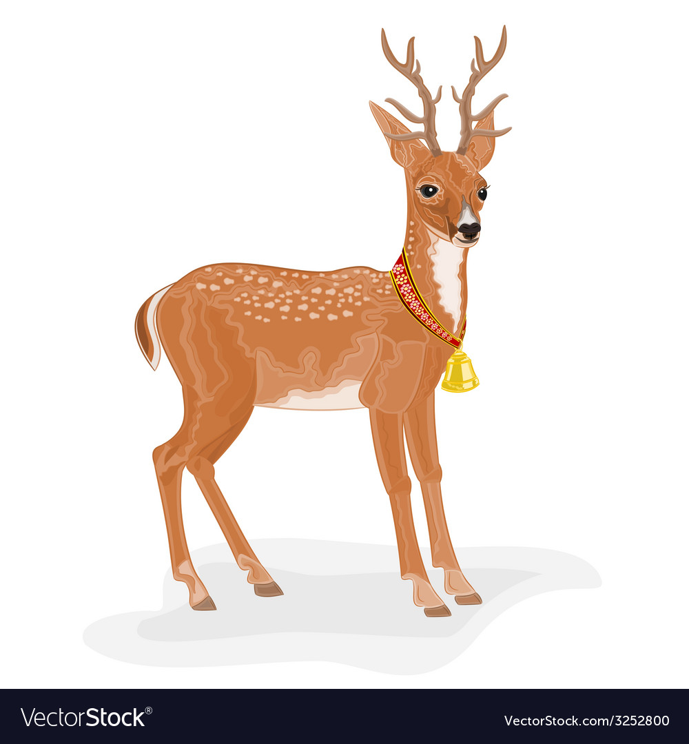 Christmas reindeer polar animal with bell vector | Price: 1 Credit (USD $1)