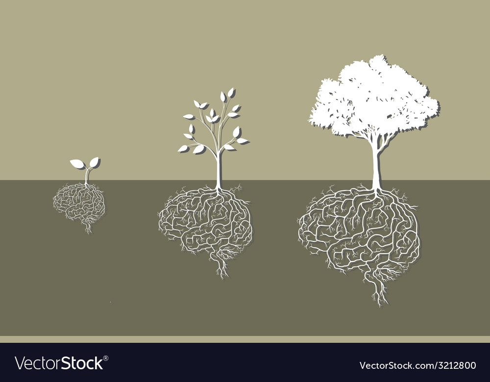 Root brain vector | Price: 1 Credit (USD $1)