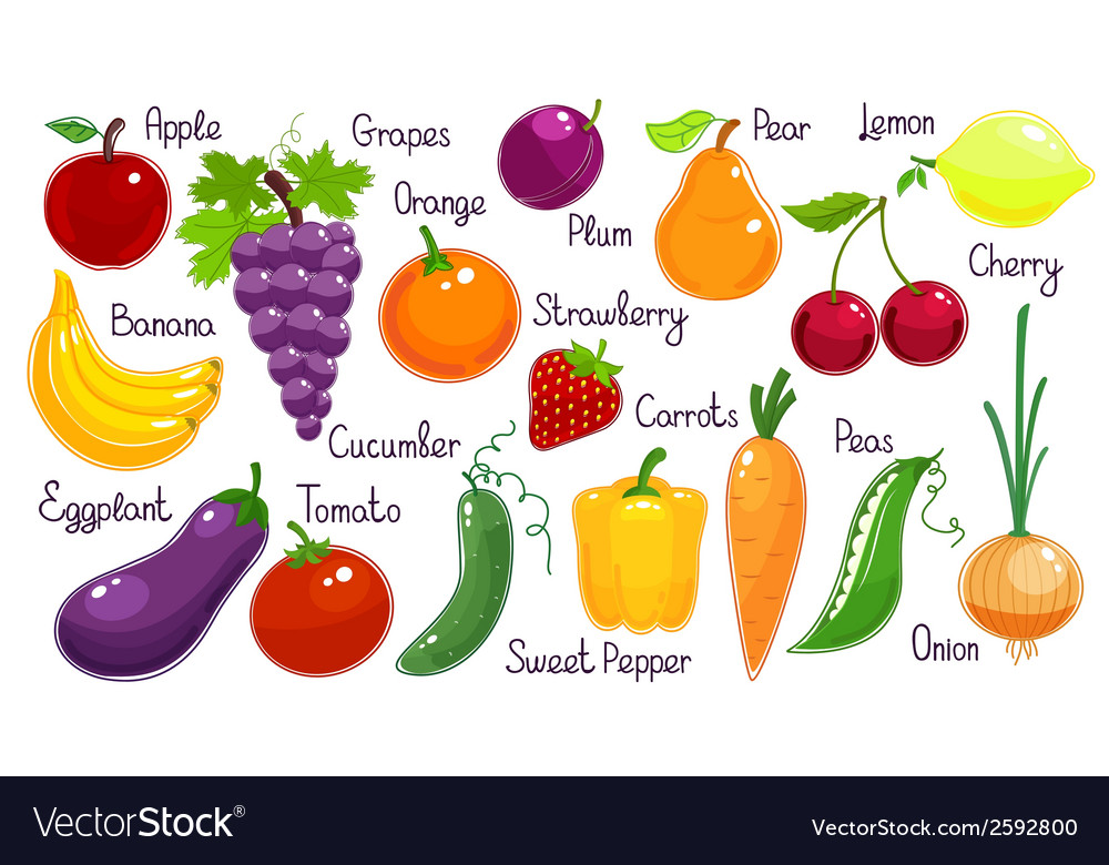 Set of fresh fruit and vegetables vector | Price: 1 Credit (USD $1)