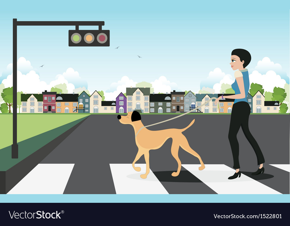 Leash dog across the street vector | Price: 3 Credit (USD $3)