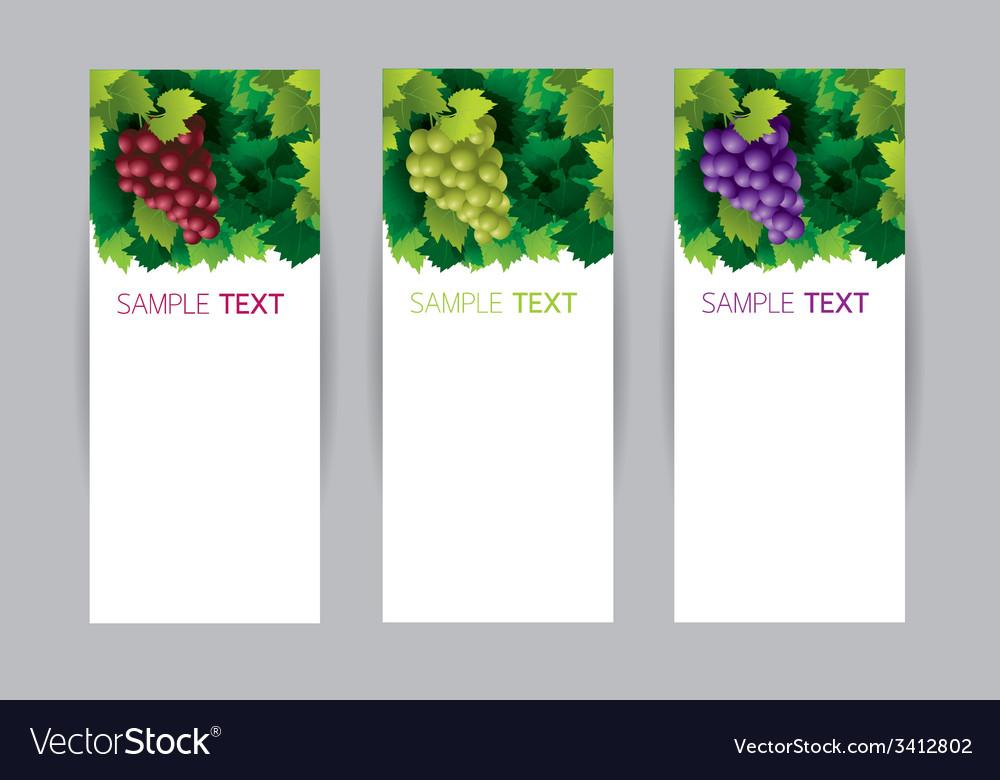 Grape vine banner vector | Price: 1 Credit (USD $1)