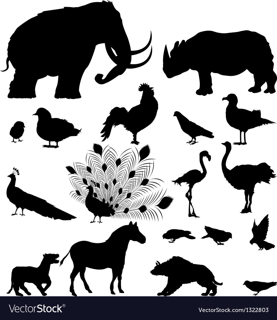 Wild animal silhouettes vector | Price: 1 Credit (USD $1)