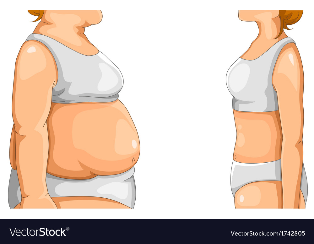 Fat and thin vector | Price: 1 Credit (USD $1)