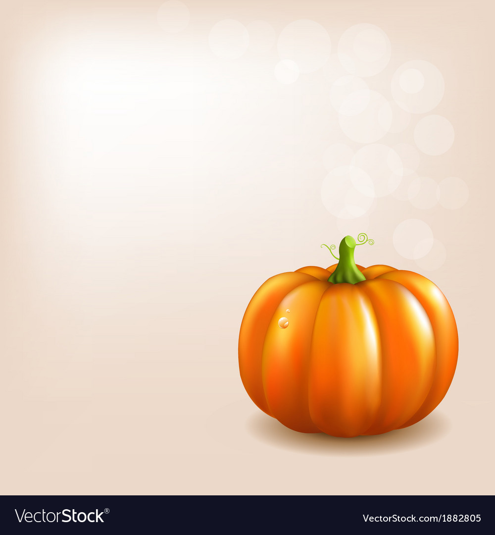 Orange pumpkin with bokeh vector | Price: 1 Credit (USD $1)