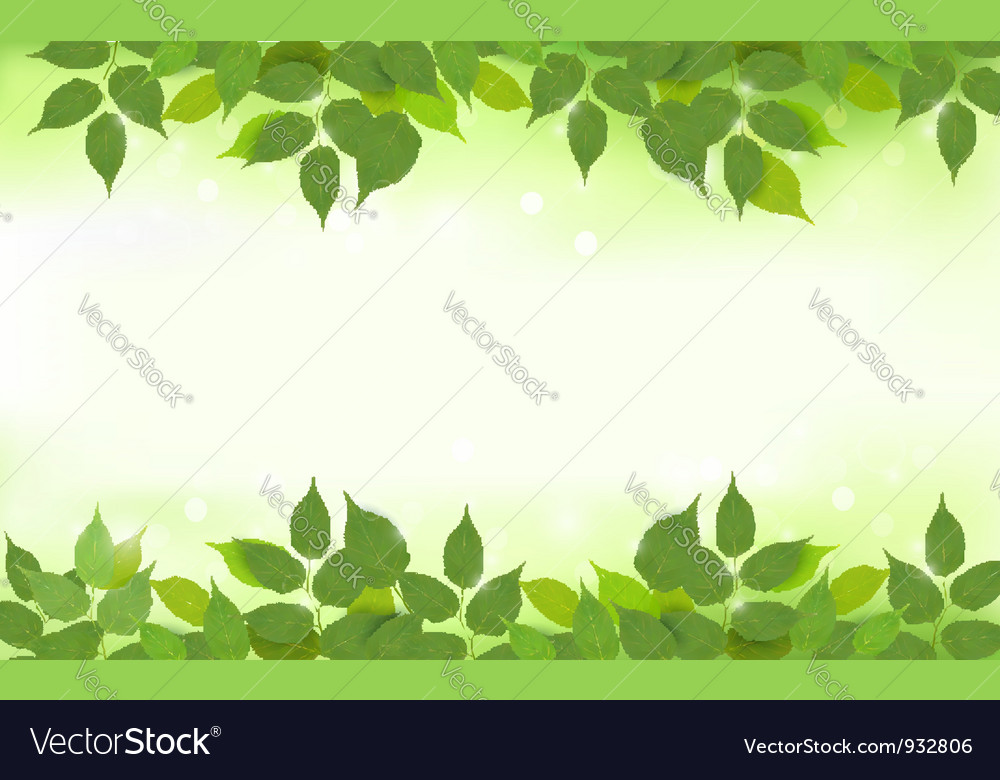 Nature background with green fresh leaves vector | Price: 3 Credit (USD $3)