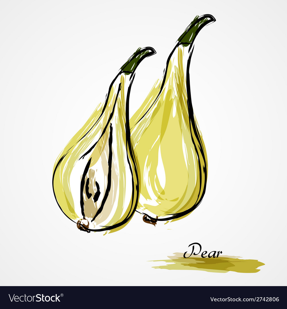 Pear fruits vector | Price: 1 Credit (USD $1)