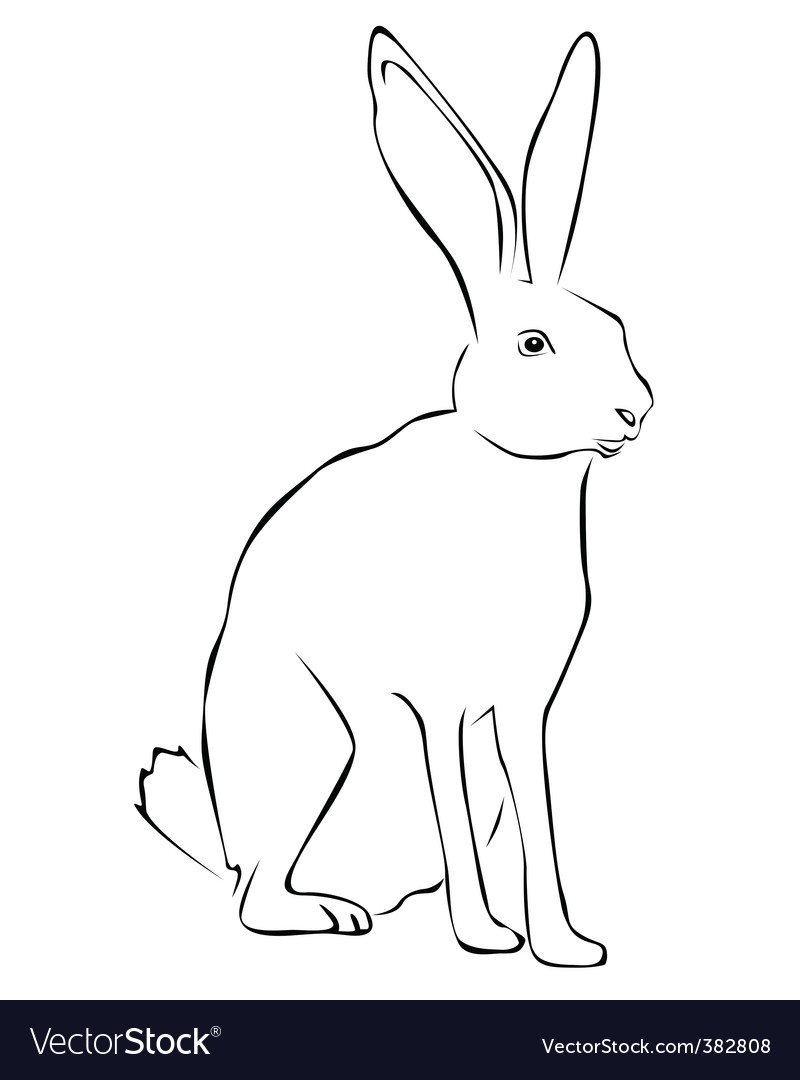 Tracing of a hare vector | Price: 1 Credit (USD $1)