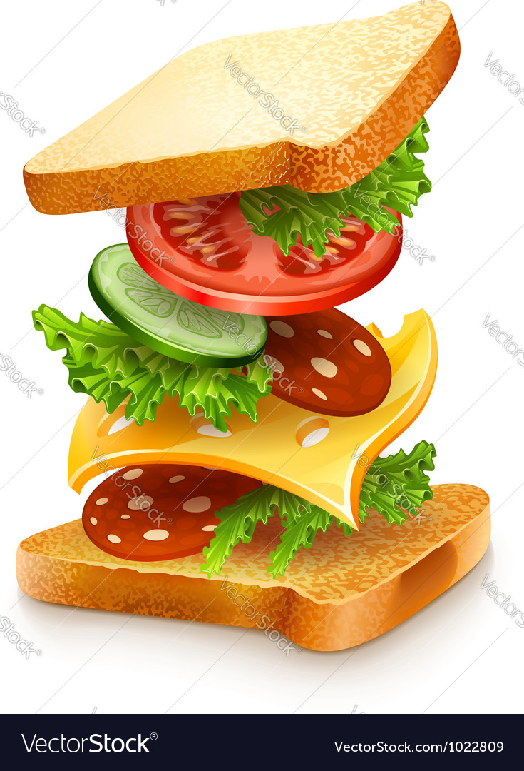 Exploded view of sandwich vector | Price: 5 Credit (USD $5)
