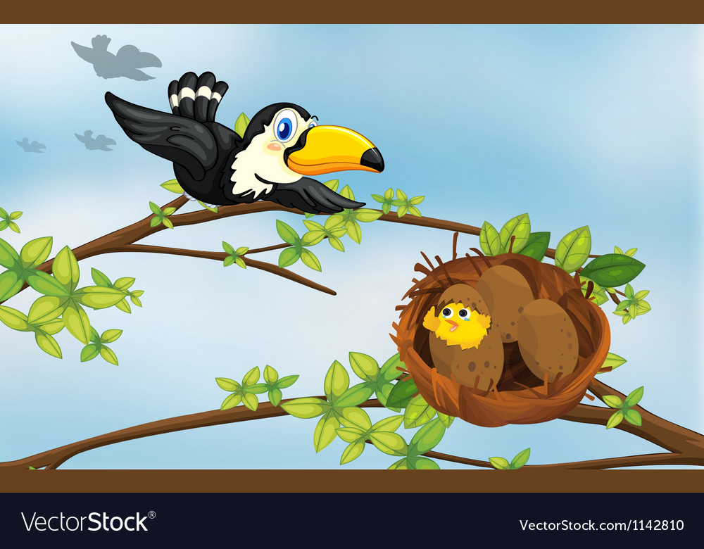 A bird and its nest vector | Price: 1 Credit (USD $1)