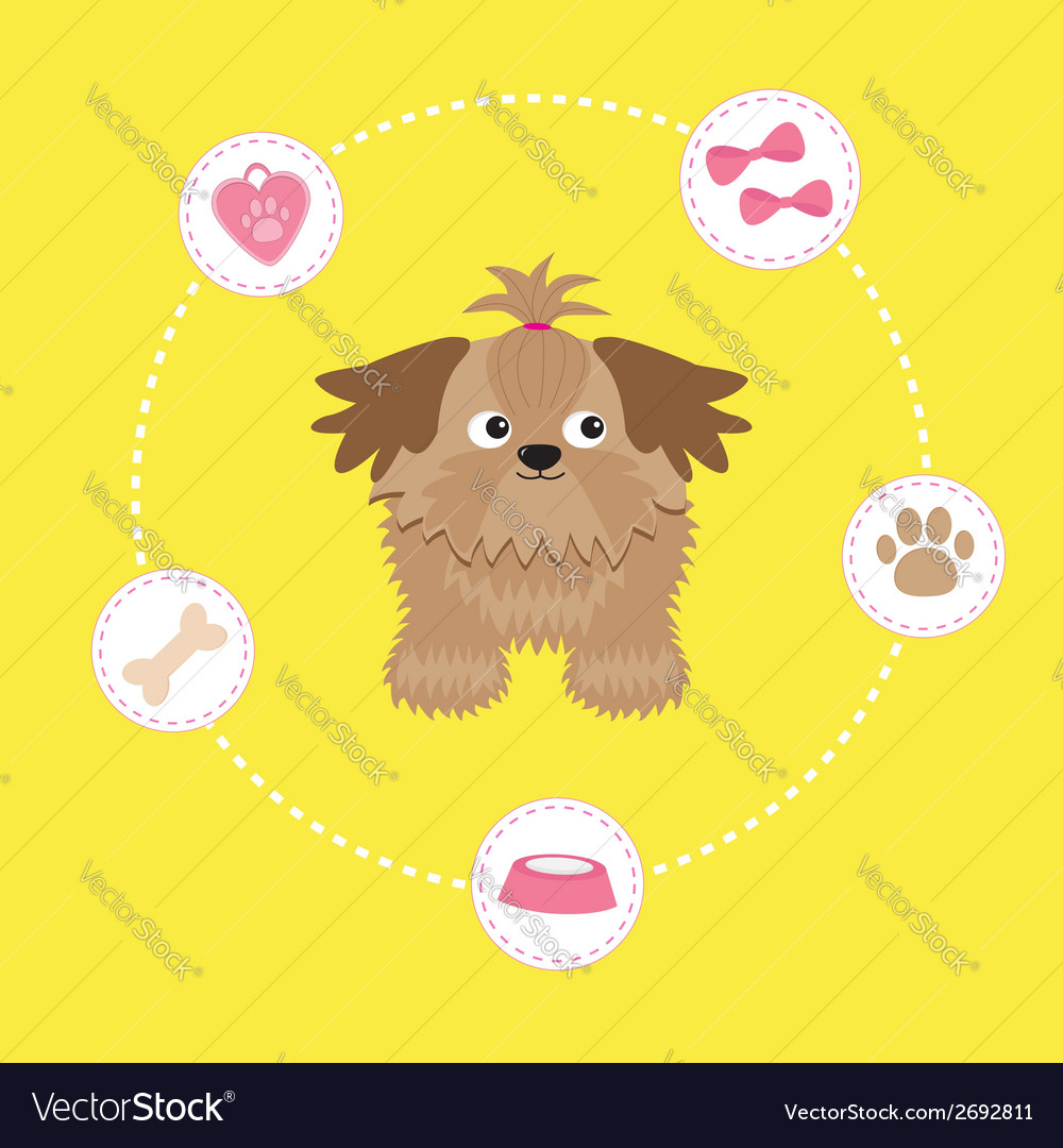 Little glamour tan shih tzu dog stuff dash line vector | Price: 1 Credit (USD $1)
