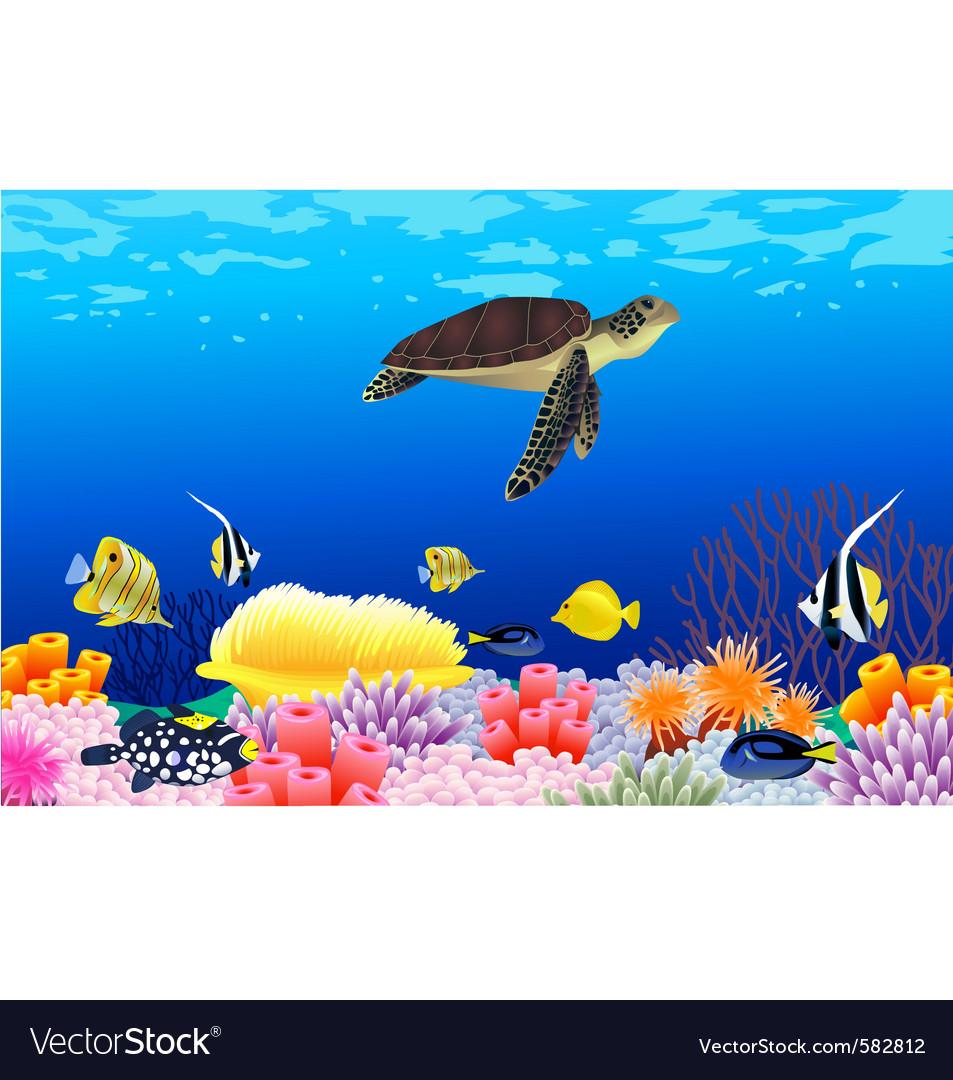 Sea life vector | Price: 3 Credit (USD $3)
