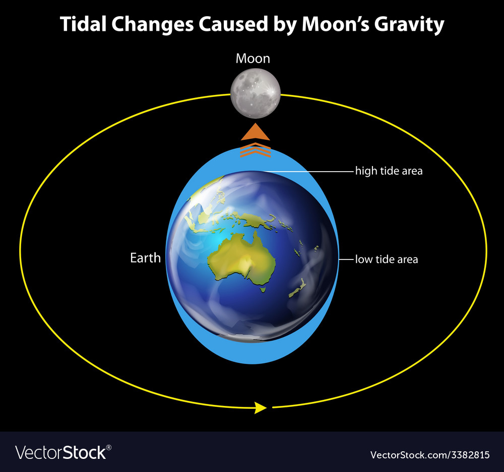 Tidal changes vector   Price: 1 Credit (USD $1)