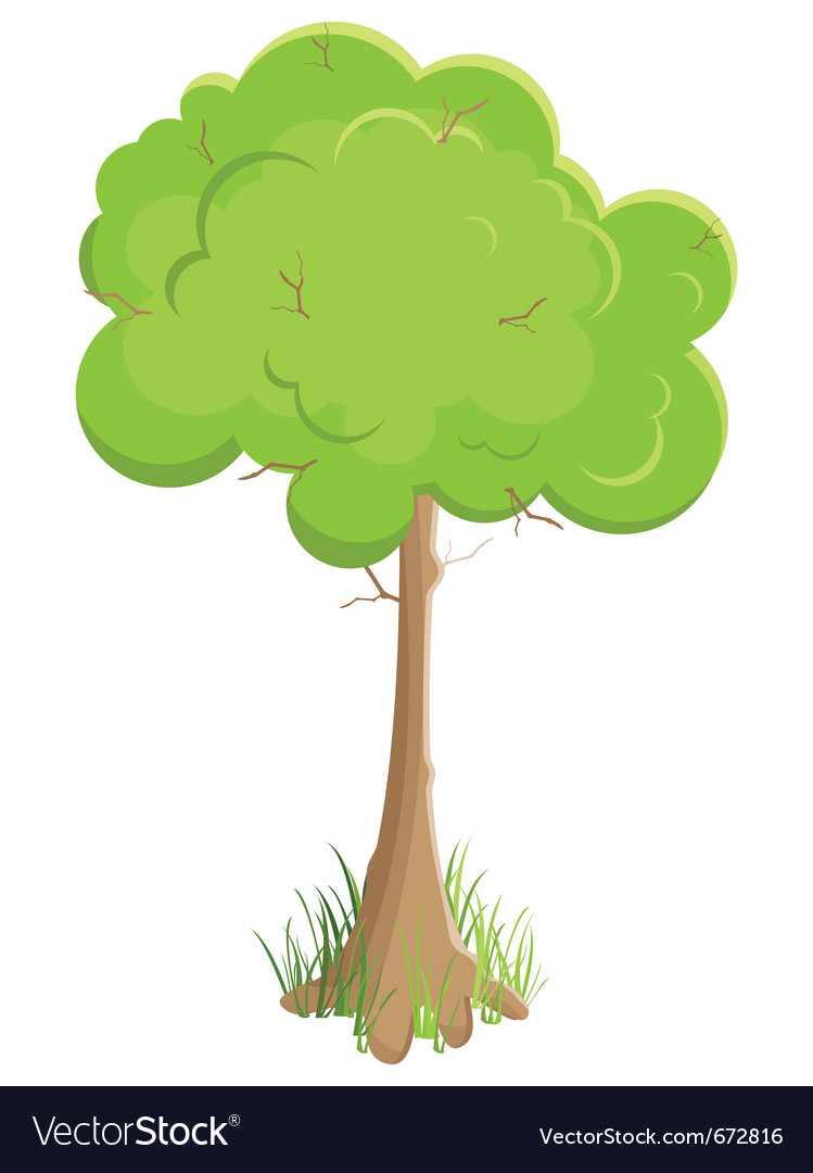 Green tree isolated on white background vector | Price: 1 Credit (USD $1)