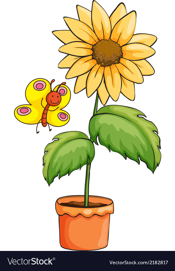 A sunflower and a butterfly vector | Price: 1 Credit (USD $1)