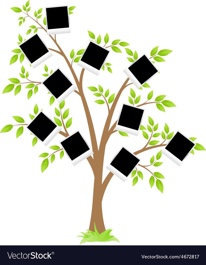 Famity tree vector