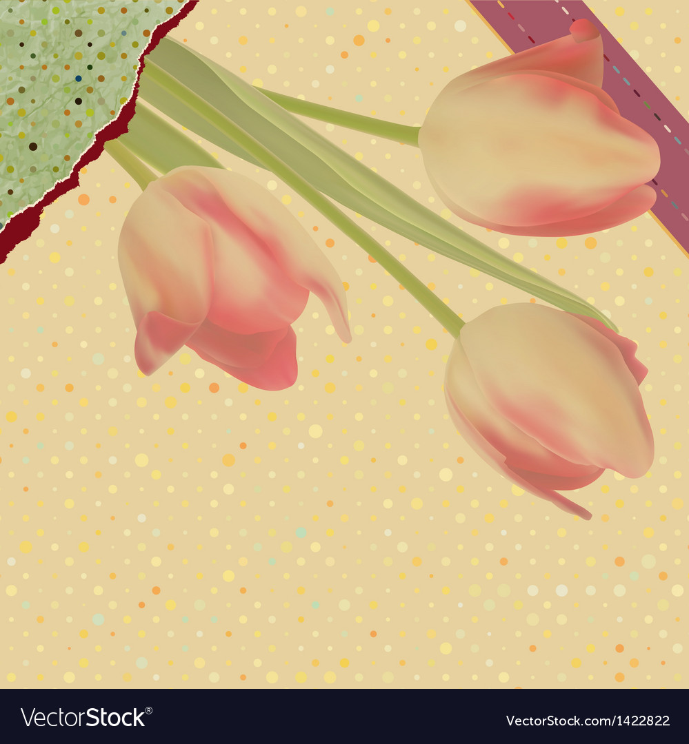 Card with beautiful red tulips polka dot eps 10 vector | Price: 1 Credit (USD $1)