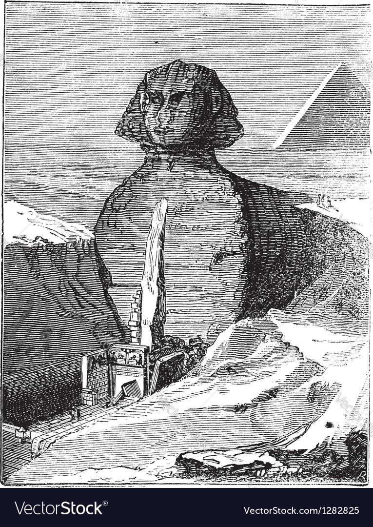 Great sphinx vintage engraving vector | Price: 1 Credit (USD $1)