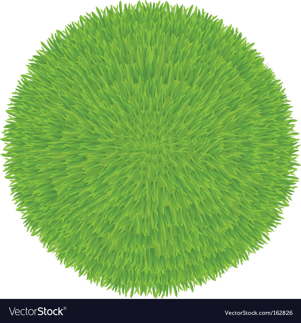 Grass ball vector | Price: 1 Credit (USD $1)
