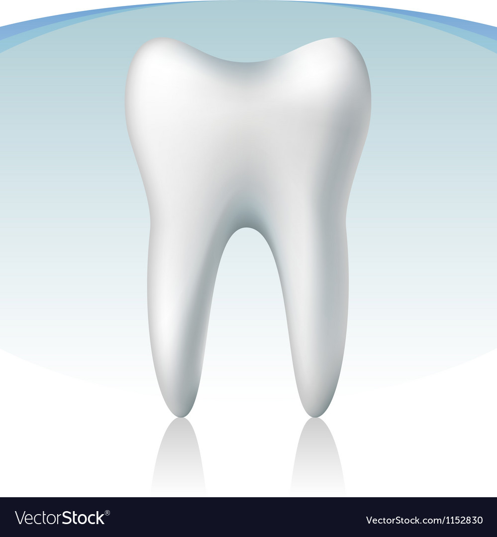 3d tooth vector | Price: 1 Credit (USD $1)