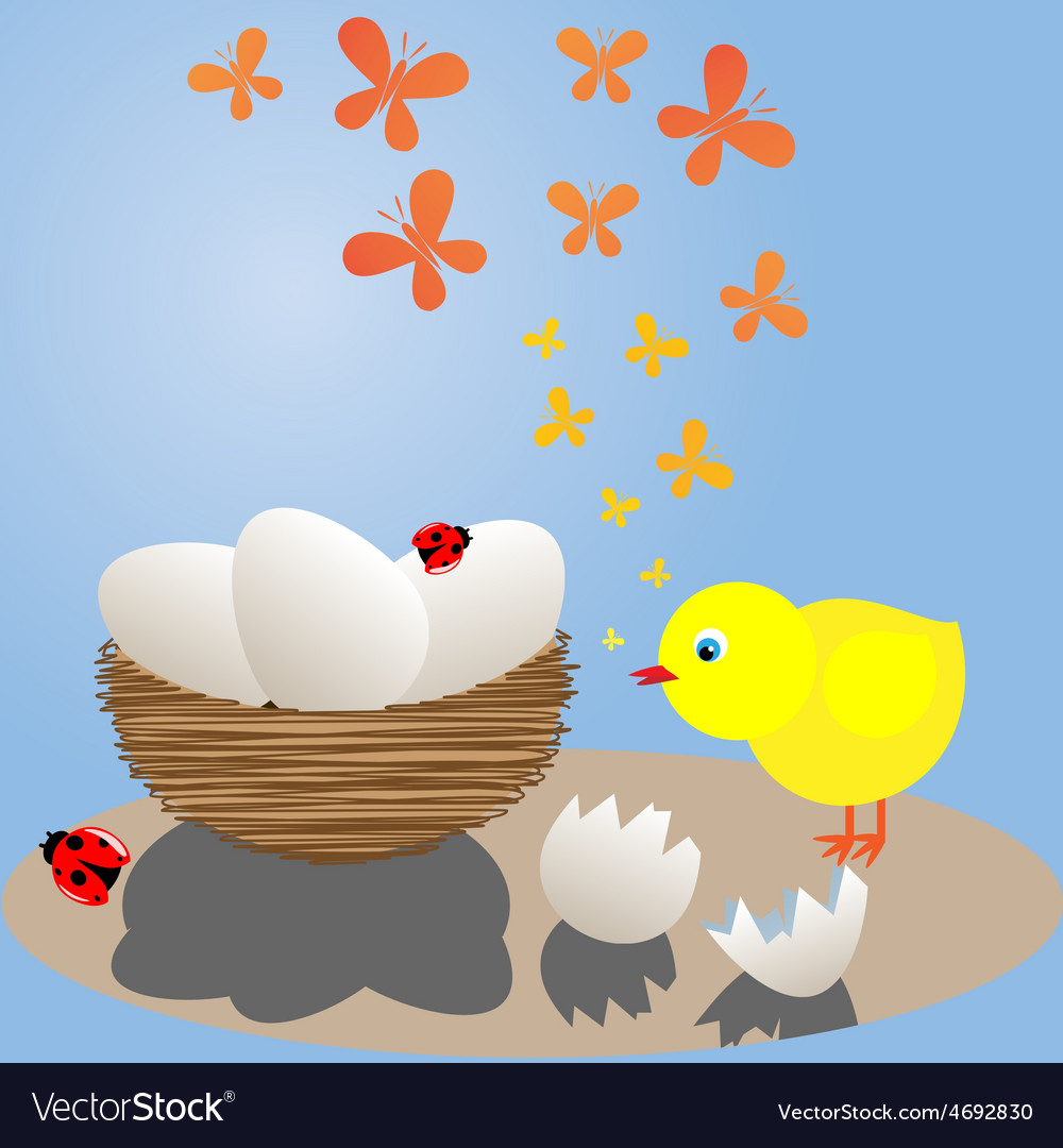 Chick near the nest vector | Price: 1 Credit (USD $1)