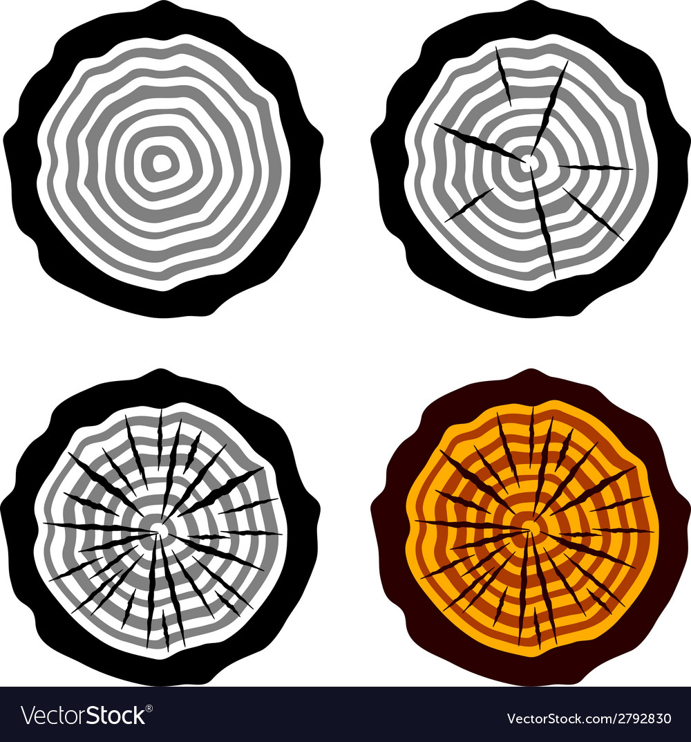 Growth rings tree trunk symbols vector | Price: 1 Credit (USD $1)