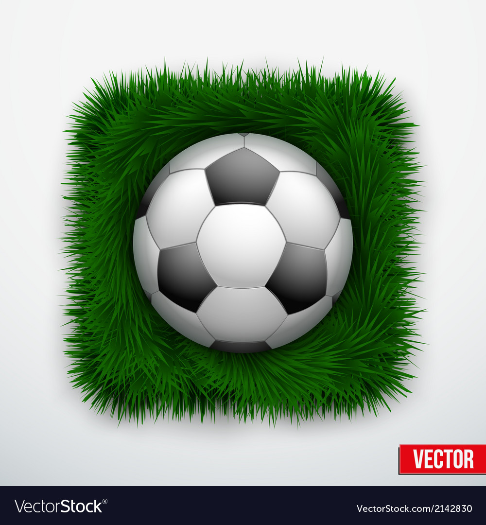 Icon football ball in green grass vector | Price: 1 Credit (USD $1)
