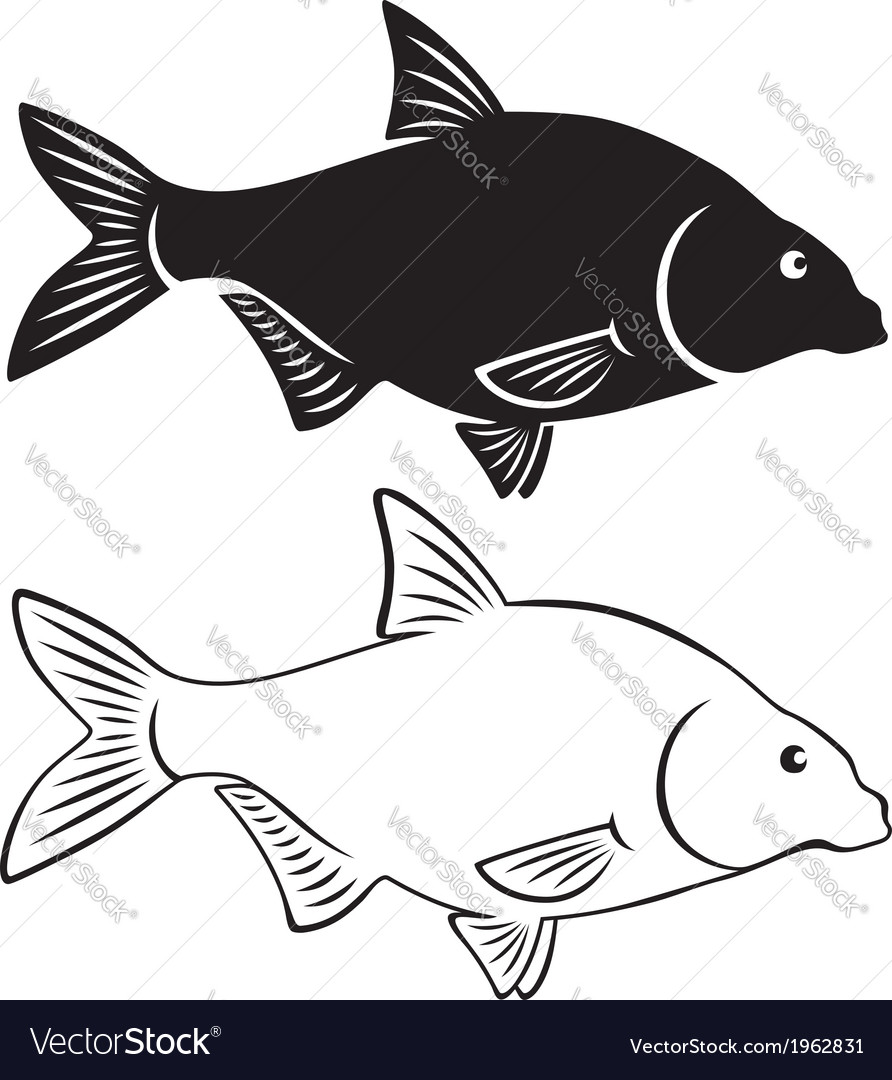 Bream fish vector | Price: 1 Credit (USD $1)