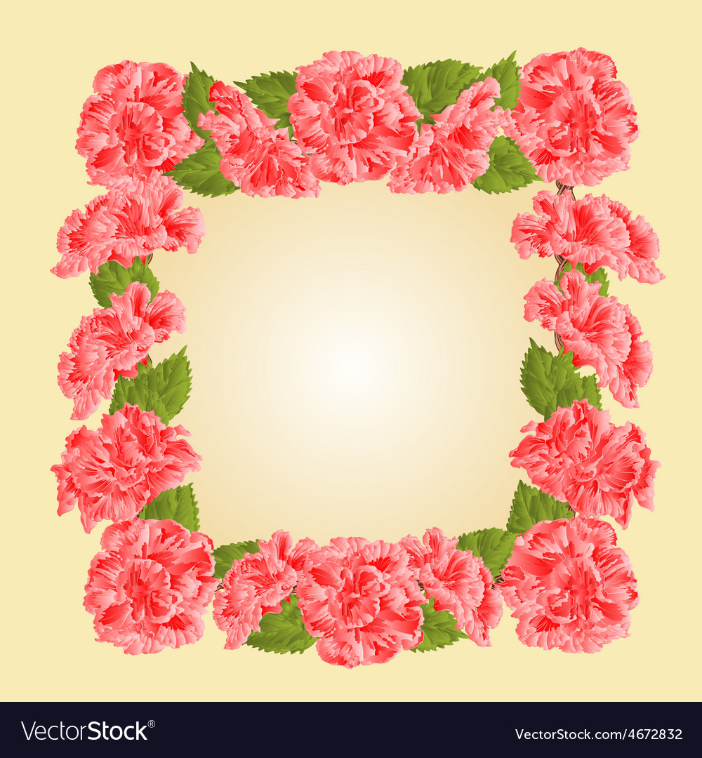 Frame with pink hibiscus greeting card vector | Price: 1 Credit (USD $1)