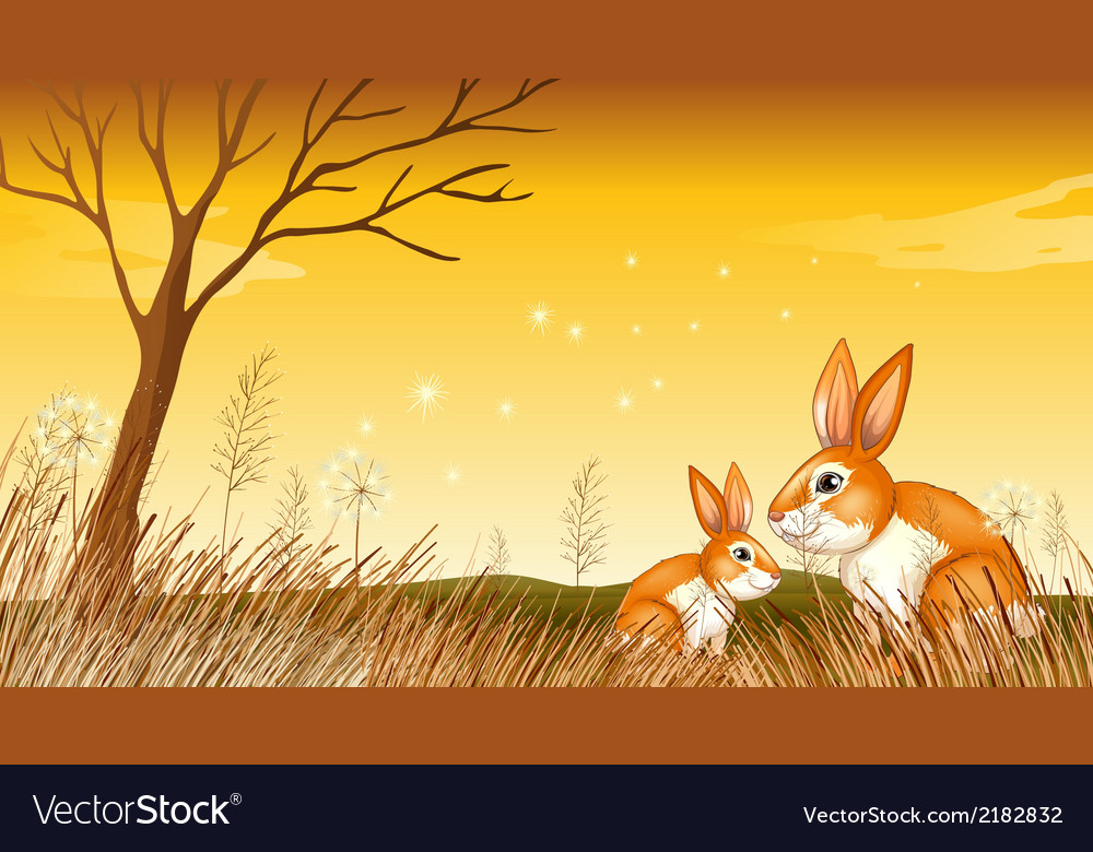 Two bunnies near the grasses vector | Price: 1 Credit (USD $1)