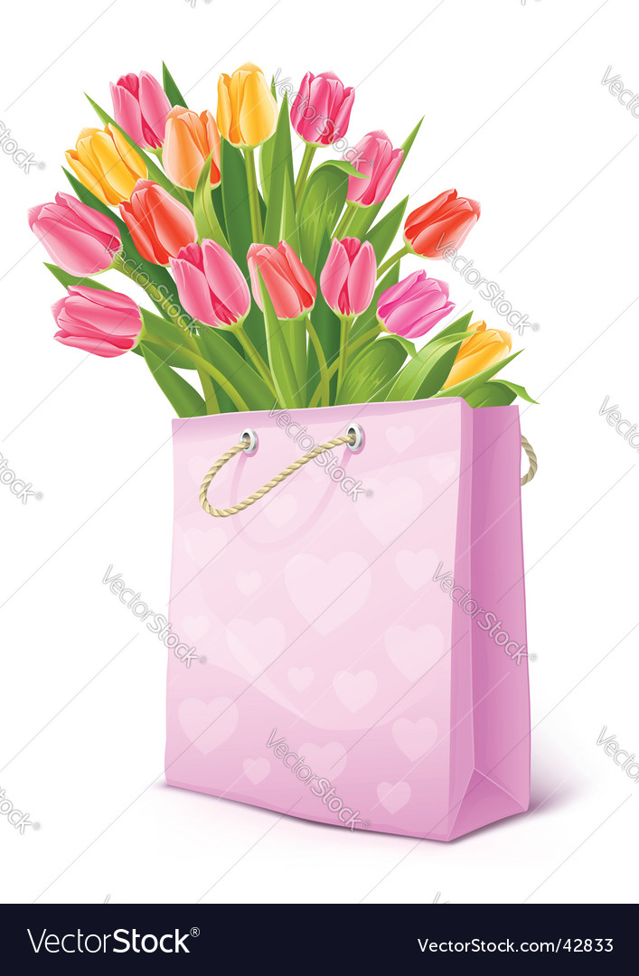 Bouquet of tulip flowers bag vector | Price: 3 Credit (USD $3)