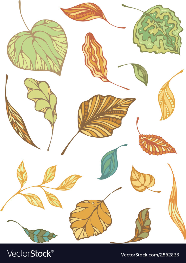 Set of autumnal leaves vector | Price: 1 Credit (USD $1)