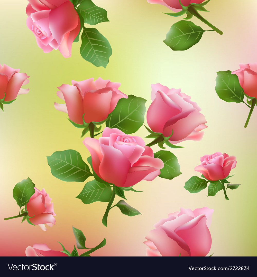 Flower rose blossom bloom floral background summer vector | Price: 1 Credit (USD $1)